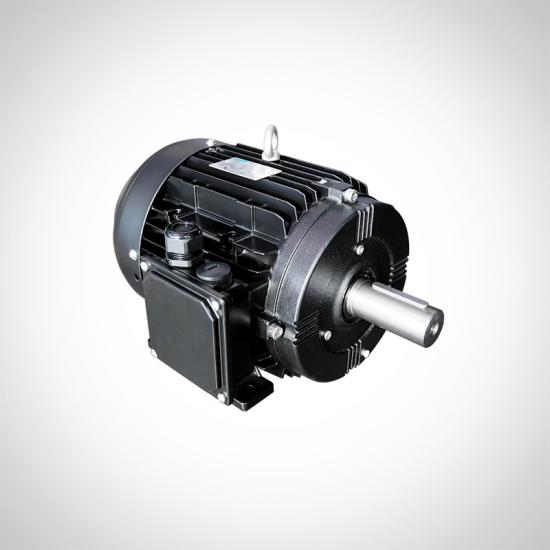 IE5 IE4 PM Motors Synchronous Motors Supplier